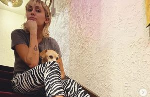 Miley Cyrus: Online-Talkshow wegen Corona-Pandemie (mileycyrus/Instagram)